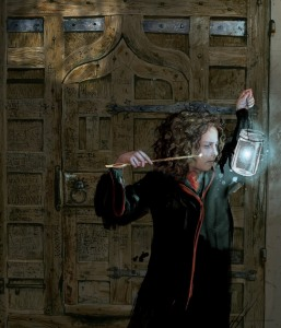harry-potter-illustrated-hermione-granger