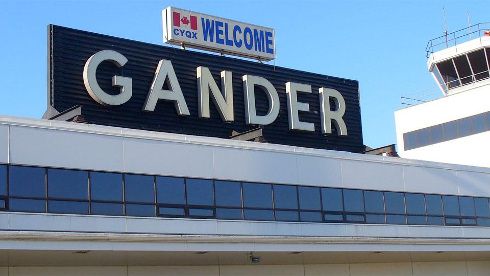gander-1.jpg